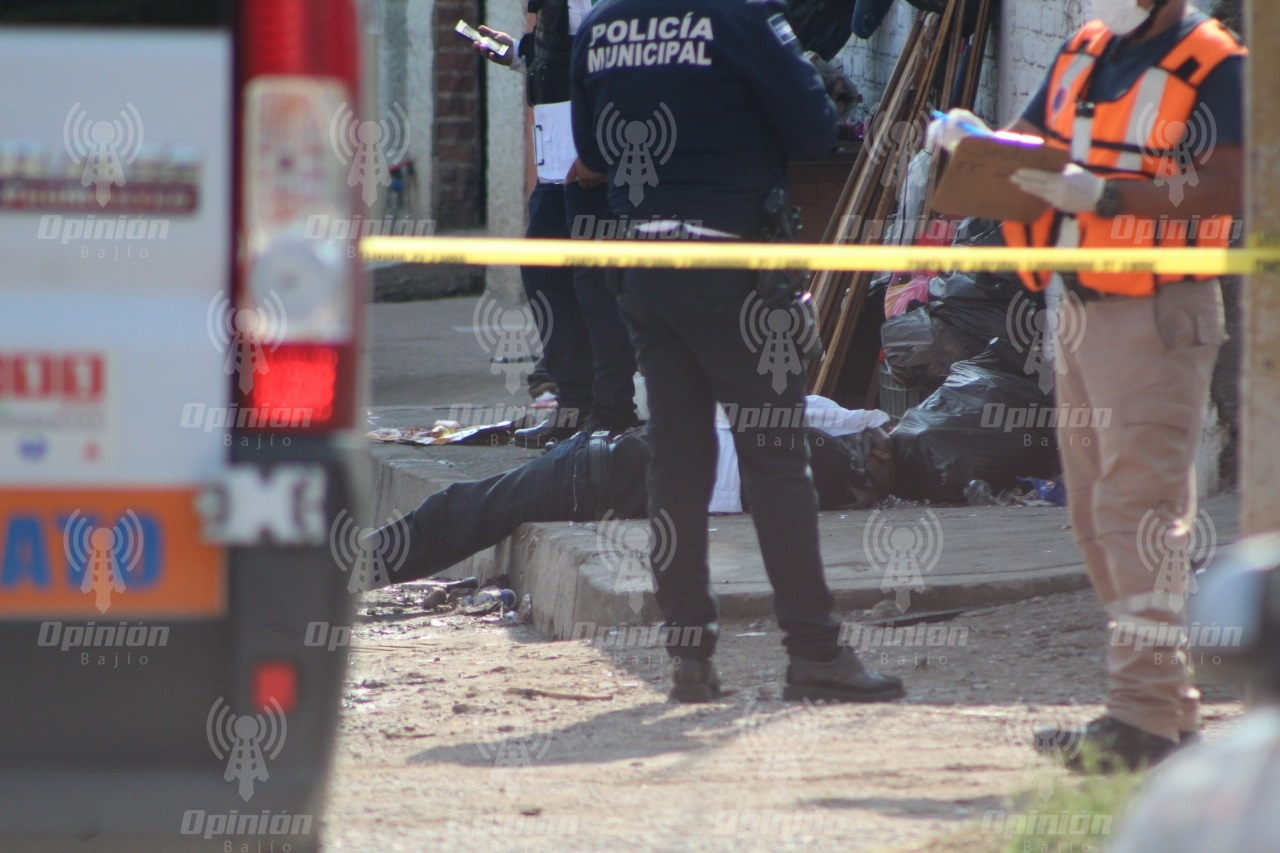 Violencia en el país pone en riesgo atracción de inversiones y al propio T-MEC: senadora Alejandra Reynoso
