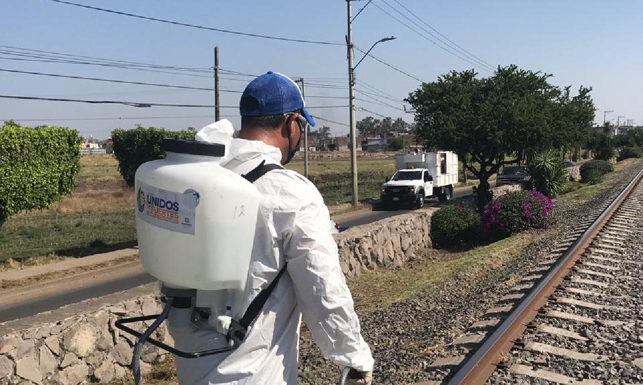 Alcanzó Guanajuato los 42 mil infectados de COVID-19
