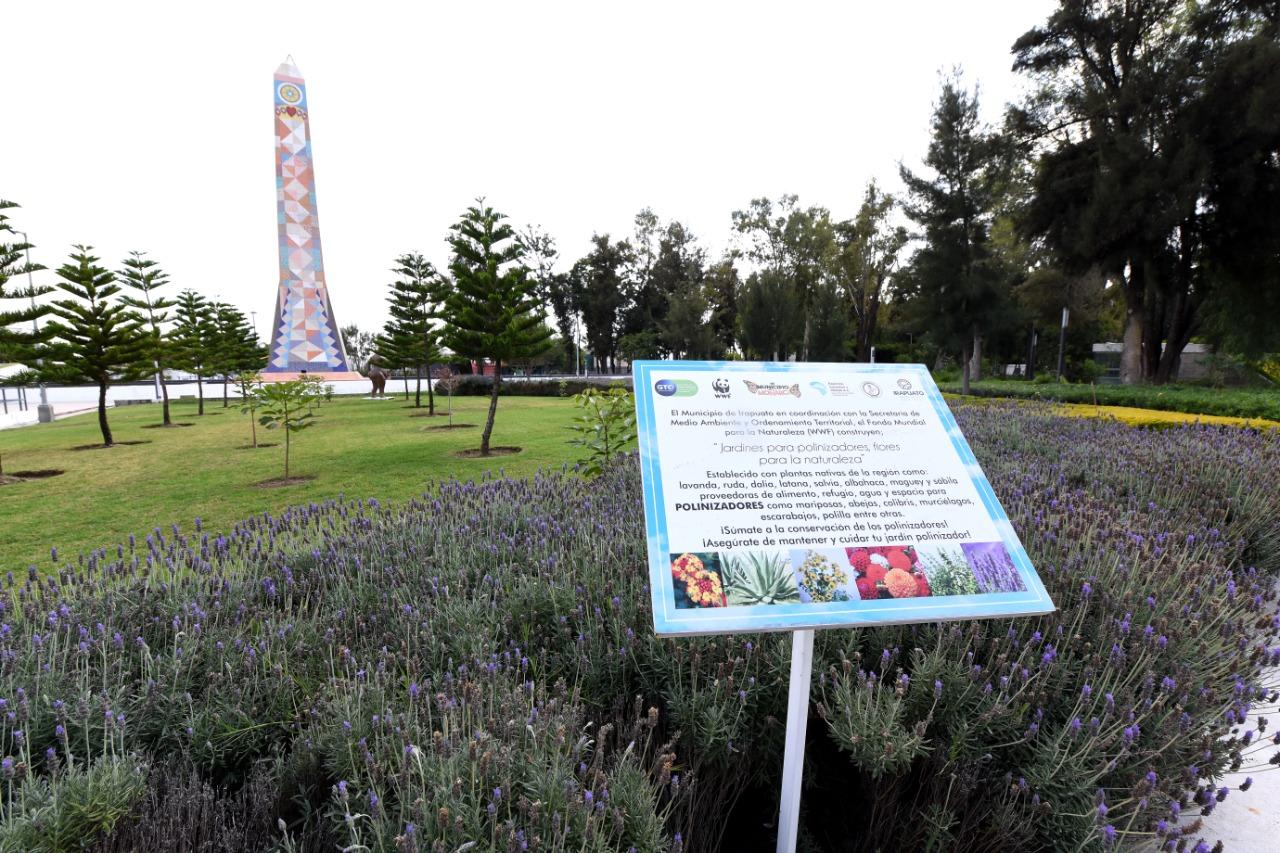 Colocan jardines polinizadores en parque Irekua y PEI