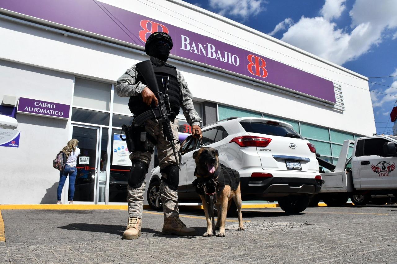 Se integran nuevos perros entrenados a la Unidad Canina de Policía de Irapuato