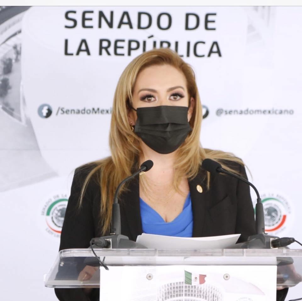 Obradorismo usará dinero de fideicomisos en elecciones 2021: senadora Alejandra Reynoso