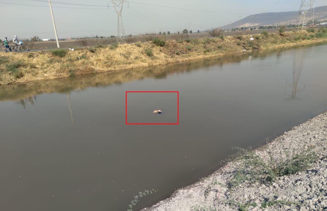 Encuentran ejecutado en canal de Coria