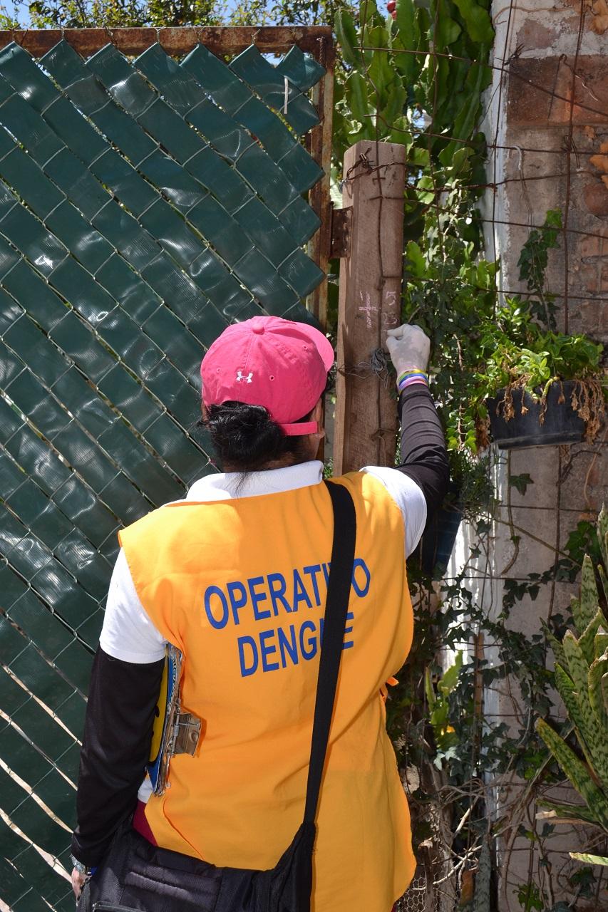 Emite SSG recomendaciones ante incremento de casos de dengue