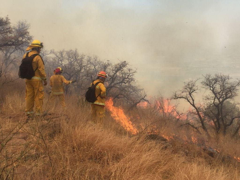 Se registra incendio forestal en cerro