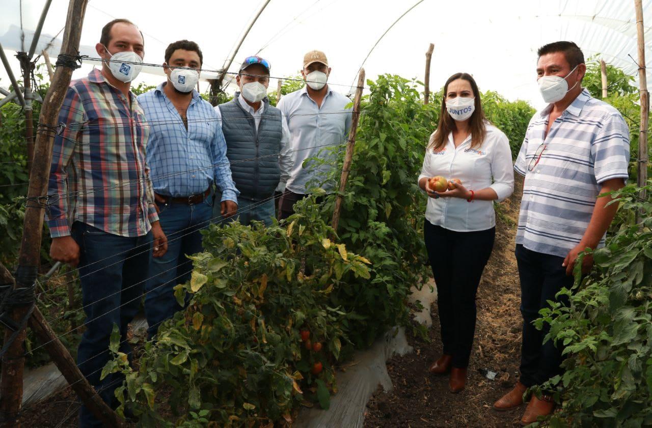Piden agricultores a Lorena Alfaro sacarlos del abandono en el que los tiene MORENA